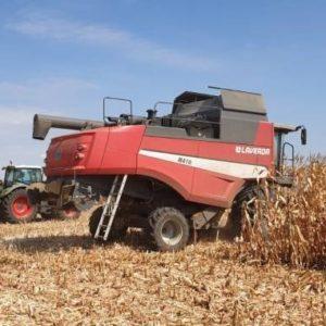 Tehnologia simplă pentru o producție de porumb de 12,5 tone/ha